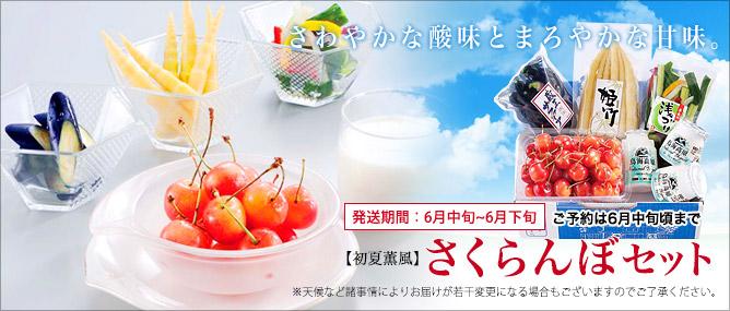 【初夏薫風】さくらんぼセット